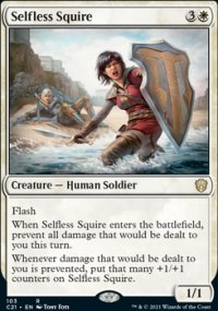 Selfless Squire -