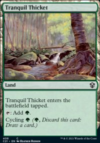 Tranquil Thicket -