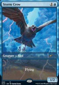 Storm Crow -