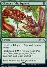 Chatter of the Squirrel -