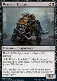 Brackish Trudge -