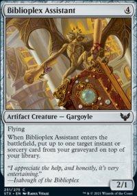 Biblioplex Assistant -
